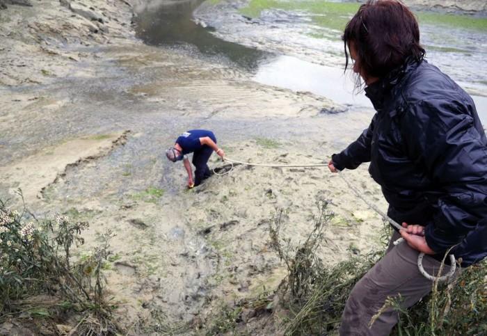 algues-vertes-mesure-hydrog-sulf