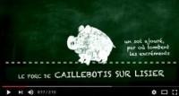 Rigal porc sur caillebotis